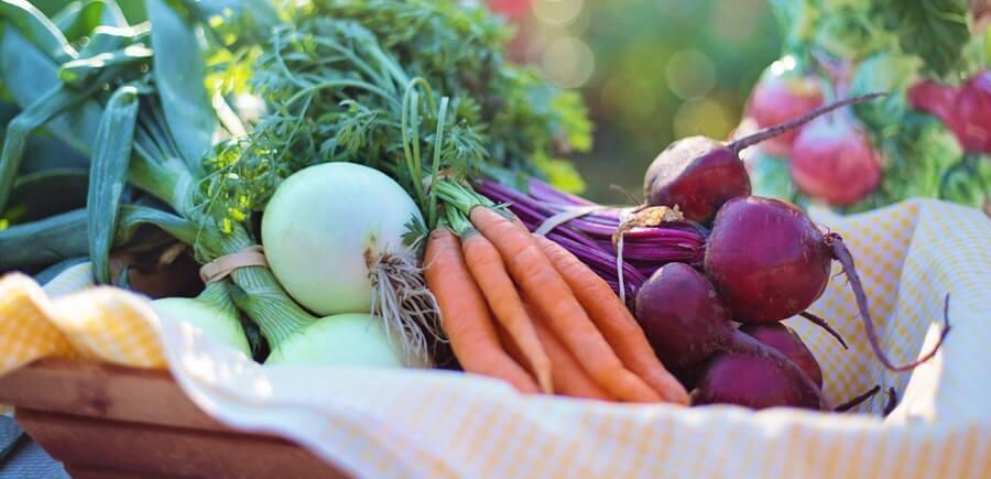 nutrition benefits importance